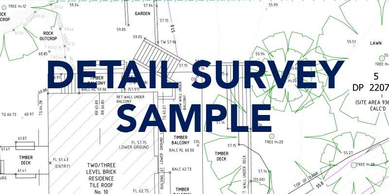 detail-survey-sample