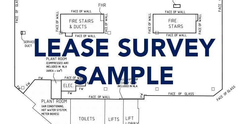 lease-survey-sample